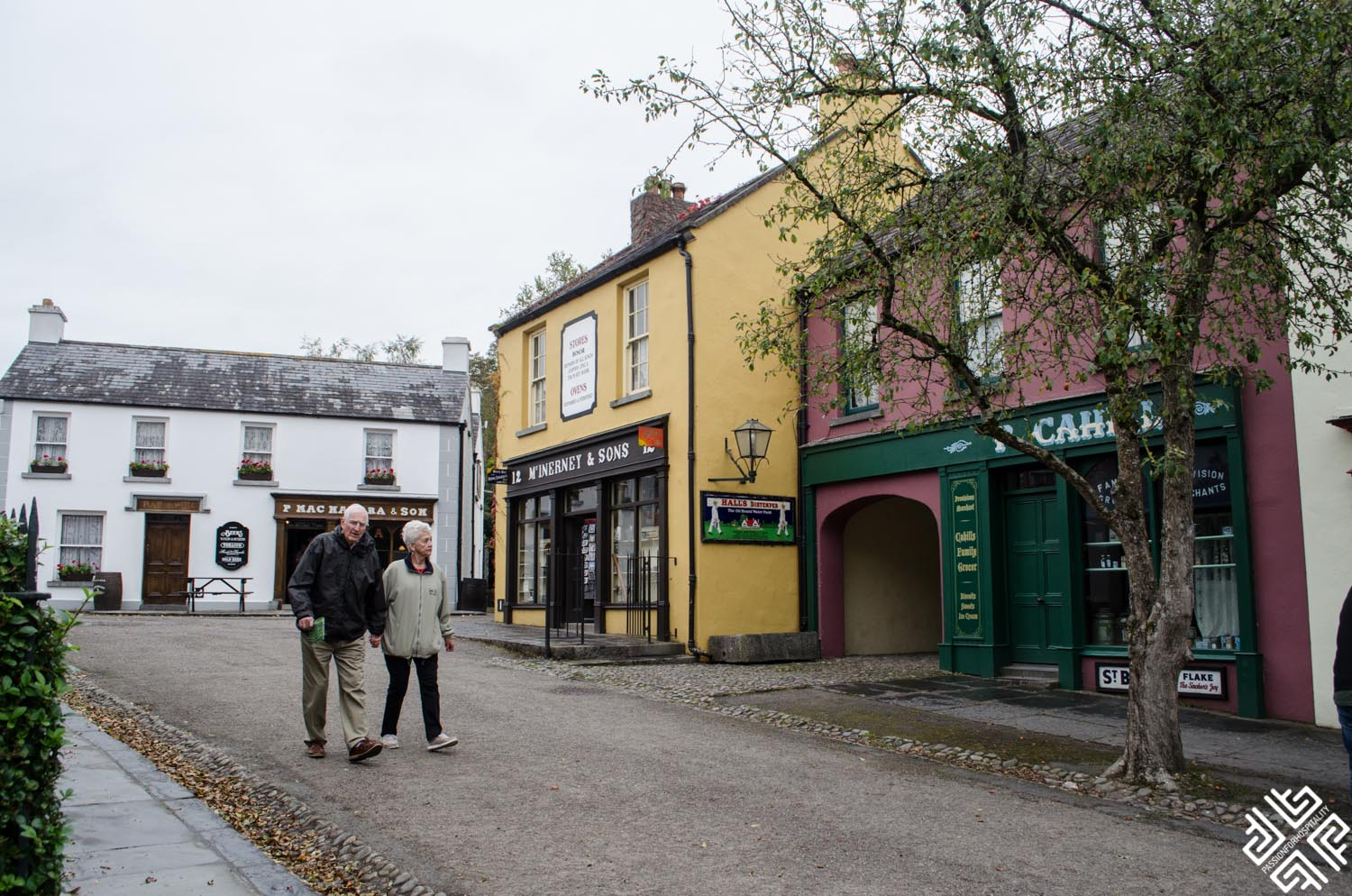 Your Perfect 36-Hours Guide to Shannon Heritage, Ireland