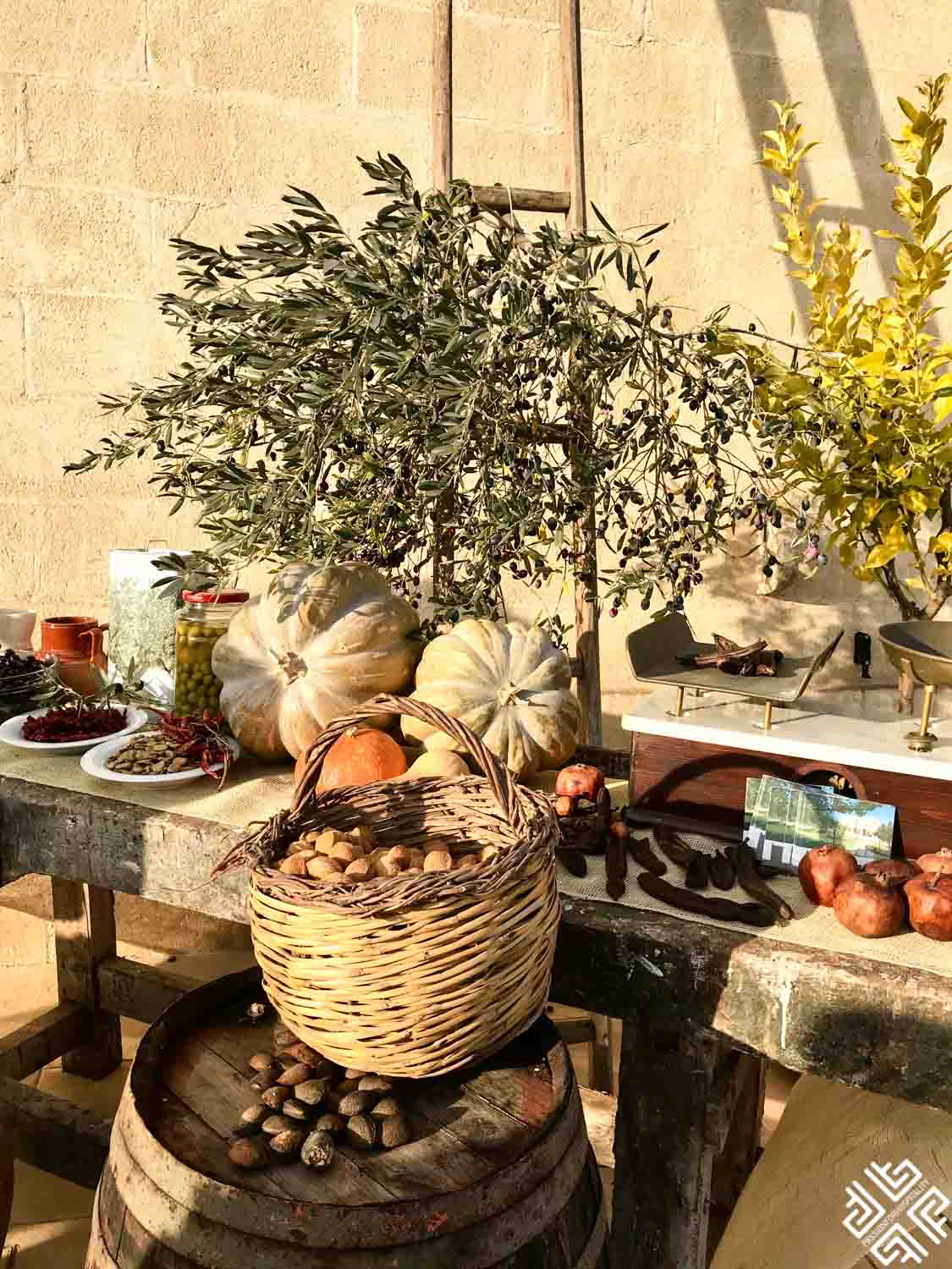 The Ultimate Guide to Puglia's Cuisine