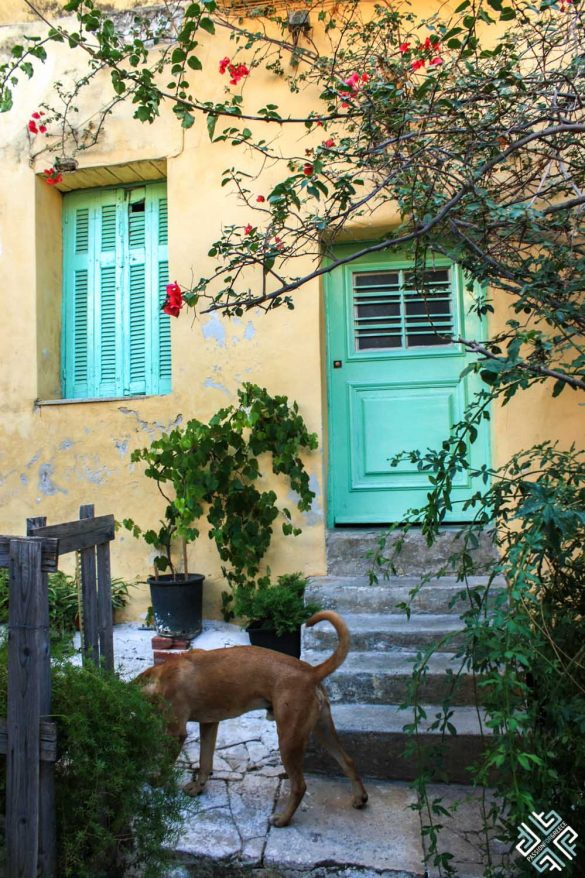 4 Days in Athens: A Local's Guide to Athens